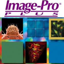 Image-Pro Plus 6.0 汉化中文破解版