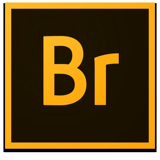 Adobe Bridge 2020 10.0.2.131 Mac/Win 中文版 图片管理软件